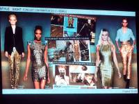 FGI 2012/13 Trend Edit with Stylesight