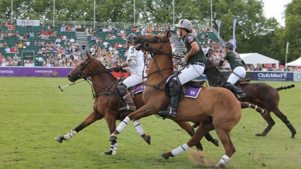 Mint Polo_Feature Image